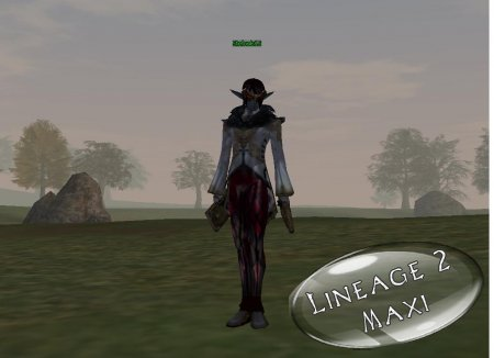 Модель оружия для LineAge 2   Dual Tears Of Fallen Angel