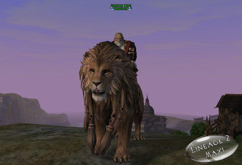 Mountain lion as pet