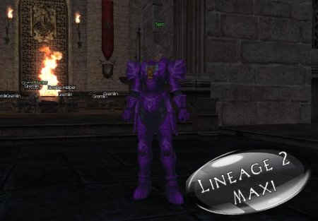 Purple Armor